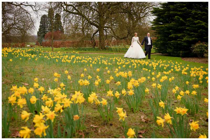 woburn sculpture gallery wedding bride and groom walking past daffodils