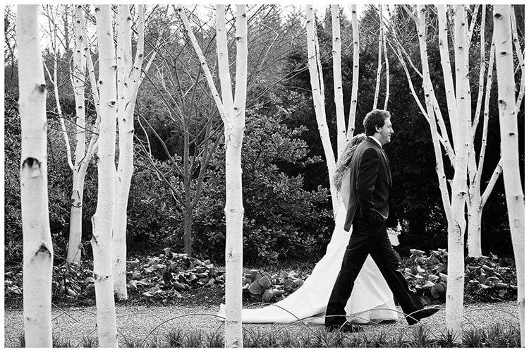 Anglesey Abbey wedding bride groom walking amongst silver birch trees