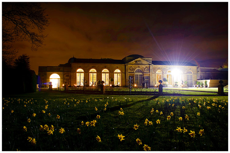 Woburn Sculpture Gallery wedding at night daffodils in fore ground