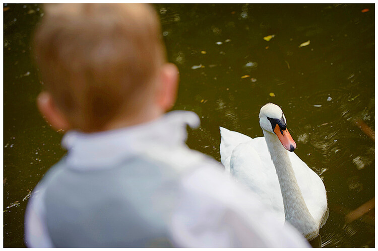 Sheene Mill wedding child looking at swan