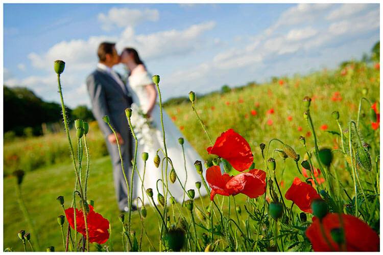 Barnsdale Lodge Hotel wedding couple kissing amongst poppies